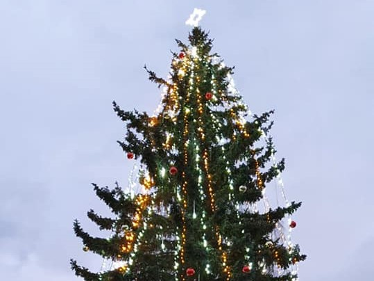 Rozsvícení vánočního stromku ve strakonické nemocnici